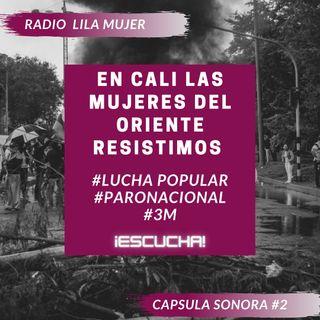 Càpsula 2. Mayo 3 Paro Nacional Colombia. En Cali las mujeres del Oriente resistimos