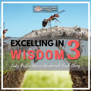 Excelling in Wisdom - Part 3