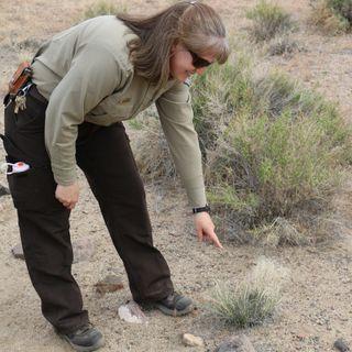 Carson River Nature Walk - Kristin Sanderson on Big Blend Radio
