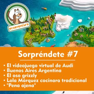 """T14 #7 El videojuego virtual de Audi, Buenos Aires Argentina, el oso grizzly, Lola Márquez y """"Pena ajena"""""""