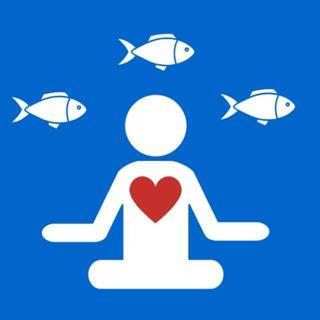 Aquarismo Terapia