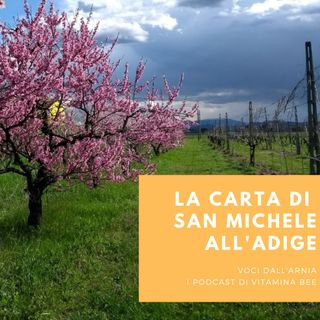 La Carta di San Michele all'Adige