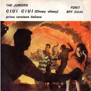 The Juniors - Chi è