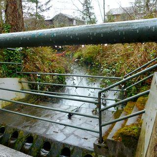 Wet Weather Running