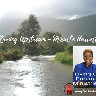 It's Raining Upstream Miracles of Harvest