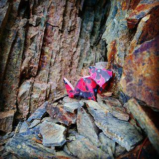 Conte : Le farfadet et la pierre d'immortalité
