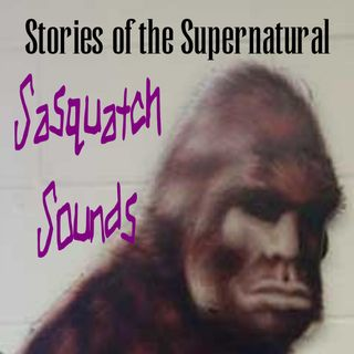 Sasquatch Sounds | Interview with Ron Morehead | Podcast
