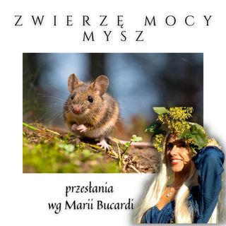 Zwierzę Mocy - Mysz - przeprowadzi Cię przez labirynt strachu | Maria Bucardi