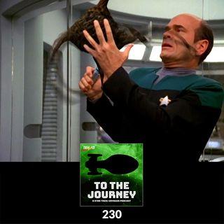 To The Journey : 230: Macrovirus? Tastes Like Chicken!