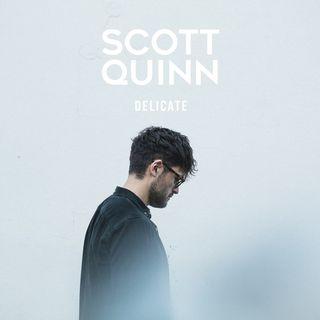 Scott Quinn Delicate