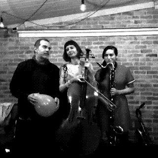 Kailash | 13 | Asteroidea (Ricardo Arias, Violeta Garcia, María Valencia)