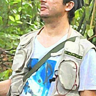 Bosques Andinos capturan más Carbono que los Amazónicos