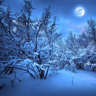 Khutbah: Long Winter Nights & Asr Prayer