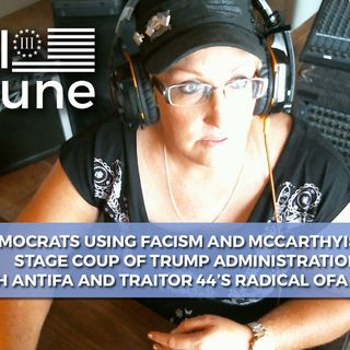 DEMOCRATS USING FASCISM AND MCCARTHYSM TO STAGE COUP OF TRUMP ADMIN