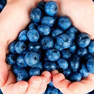 Blueberries - pt. 2
