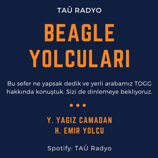 BEAGLE YOLCULARI III