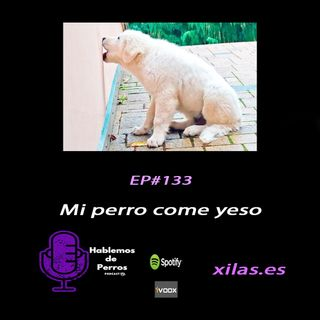 EPISODIO #133: Mi perro come yeso… qué hago??