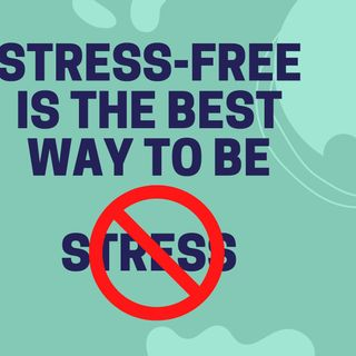 Stress-Free Is The Best Way To Be