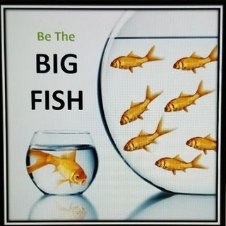 Episode 6 - The Big Fish - FactorCareers Live!