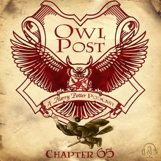 Chapter 065: The Quidditch World Cup