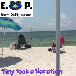 E.O.P. 33: Tiny took a Vacation