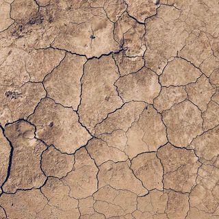 Terreni europei sotto stress: il 60% è in pericolo