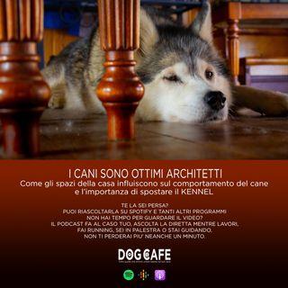 #051 - Come gli spazi della casa influiscono sul comportamento del cane, l'importanza di spostare il KENNEL