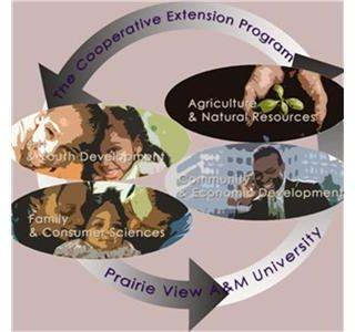 The Business Plan: Entrepreneurship in a rural area