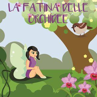 8 - La fatina delle orchidee