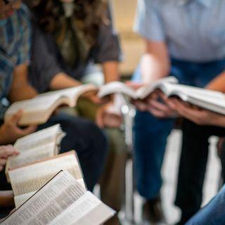STEUBENVILLE - Dr Michael Barber: Applied Biblical Studies