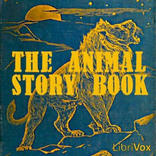 The Animal Story Book 3 Buzzard and Priest Traditional Storytelling International Kids' Books
