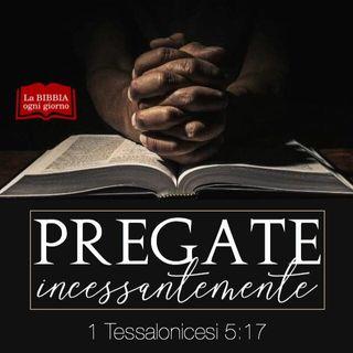 S.S.Rosario. Preghiamo Insieme 20//02/2019
