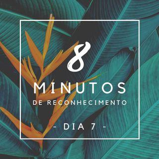 8 Minutos de Reconhecimento - Dia 7