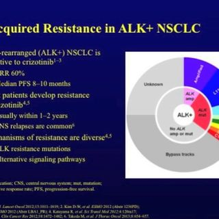 ASCO Lung Cancer Highlights, Part 10: Strategies After Resistance to Crizotinib in ALK-Positive Advanced NSCLC (video)