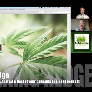 Cannabis Tech Investment Pitch Deck Review (2020)