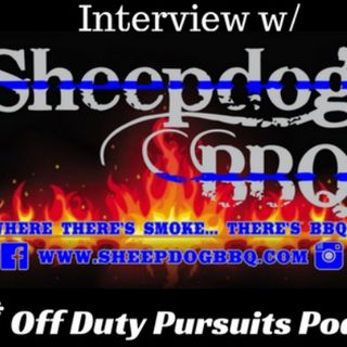 Interview with sheepdog bbq
