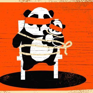 Der Fall Meng Meng - Schwarze Krimikomödie über eine Pandaentführung
