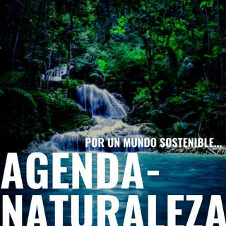 Agenda Naturaleza 28. Krion, un material anticontaminante.