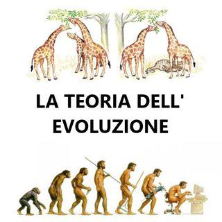 017 La teoria dell'evoluzione