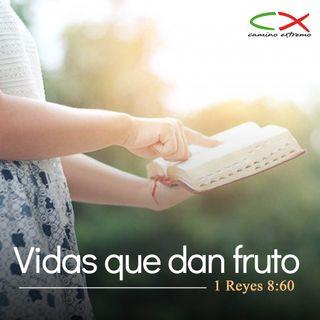 Oración 25 de marzo (Vidas que dan fruto)