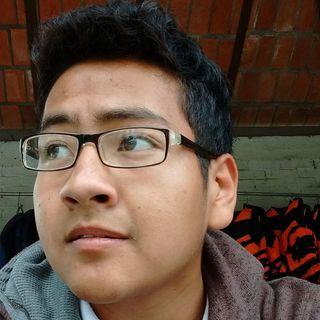 Diego Flores Mendoza