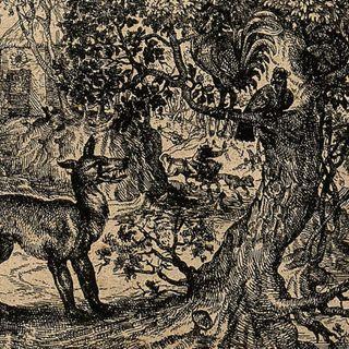 Puntata IV: Esopo e il concetto del contro-natura