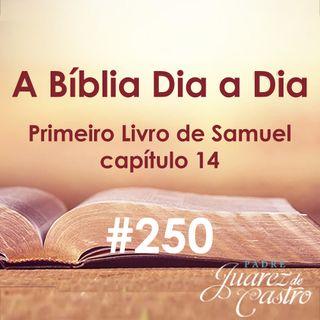 Curso Bíblico 250 - Primeiro Livro de Samuel 14 - Jônatas contra os Filisteus e salvo pelo povo - Padre Juarez de Castro