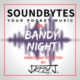 Soundbytes vol 1.  - Bandy Night