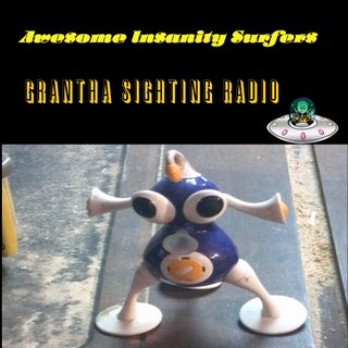 Grantha Sighting Radio