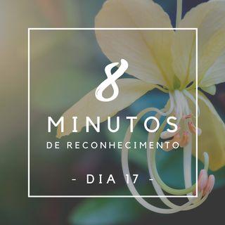 8 Minutos de Reconhecimento - Dia 17
