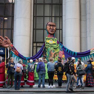 La finanza in pressing su Bolsonaro Il Brasile salvi l'Amazzonia
