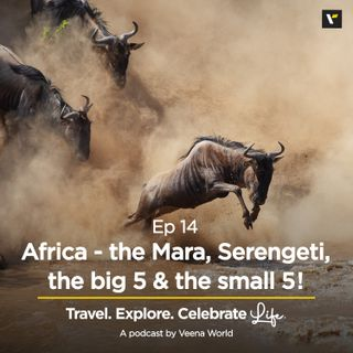 Ep 14: Africa - the Mara, Serengeti, the big 5 & the small 5!