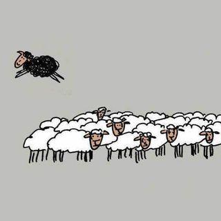 Lunga vita alle pecore nere