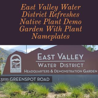 EVWD Native Plant Demo Garden With Janett Robledo